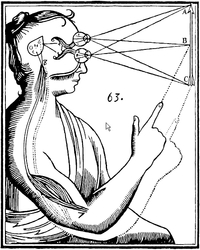 Is perception controlled by reason or by the senses? (Image: René Descartes, 1677/zvg)